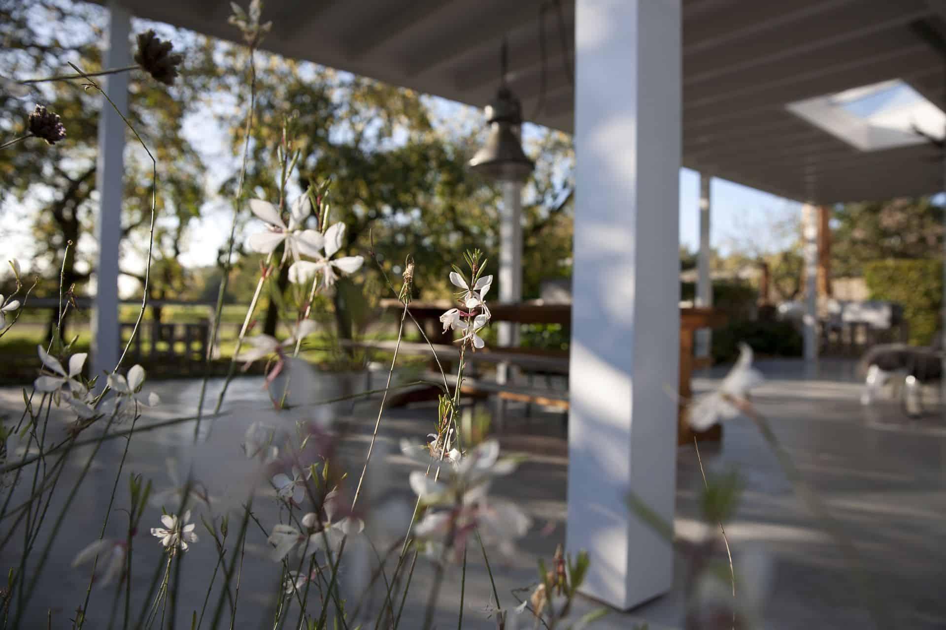 betonnen terras in tuin, beton terras in de achtertuin