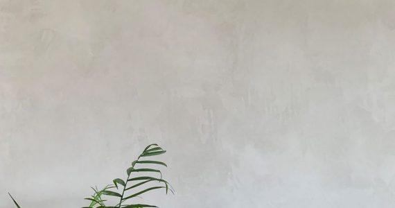 American Clay, American Clay wanden, natuurlijke wandafwerking, natuurlijke wandbekleding, kleiwanden